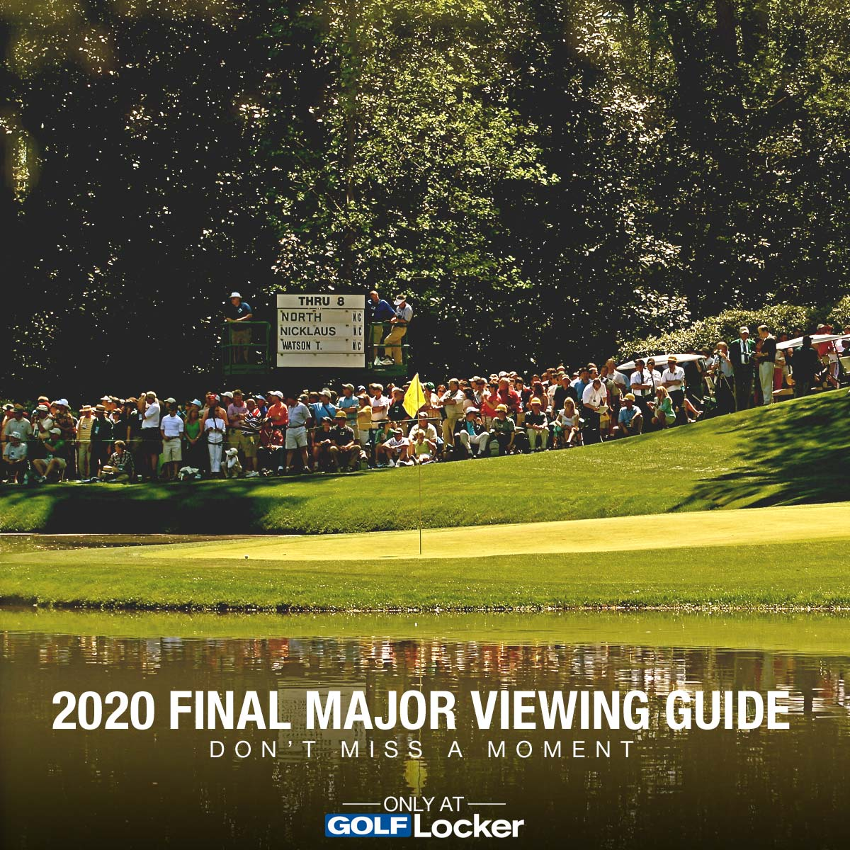 2020 Final Major Viewing Guide